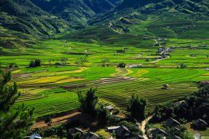 Khám phá vẻ đẹp hoang sơ của bản Ý Linh Hồ Sapa