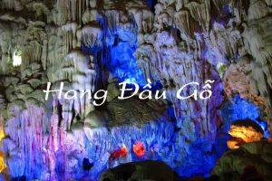 Khám phá hang Đầu Gỗ khi đi tour du lịch Hạ Long 1 ngày