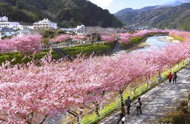 Thời tiết Nhật Bản vào tháng 2