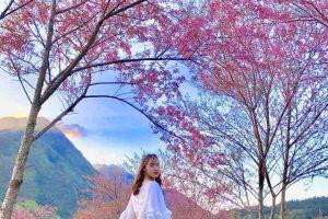 Du lịch Sapa mùa nào đẹp nhất? Tháng nào là đẹp?