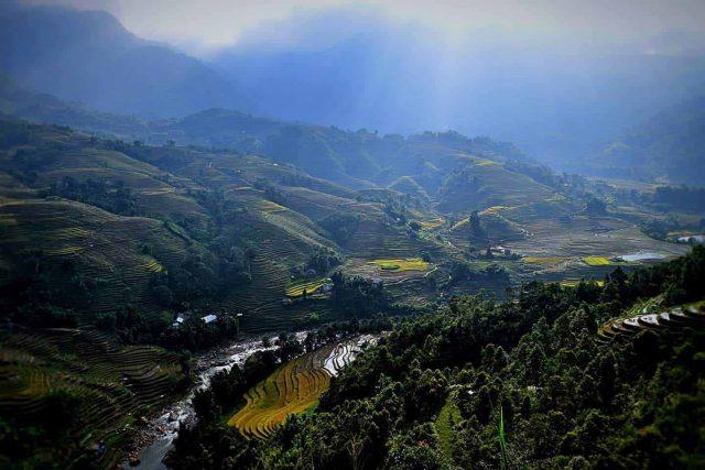 Núi rừng Sapa mờ mờ ảo ảo trong sương