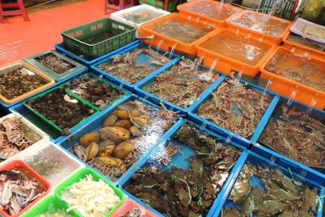 Mua hải sản tươi sống ở Hạ Long