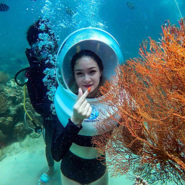 Du lịch Phú Quốc không thể bỏ lỡ ngắm san hô dưới đáy đại dương